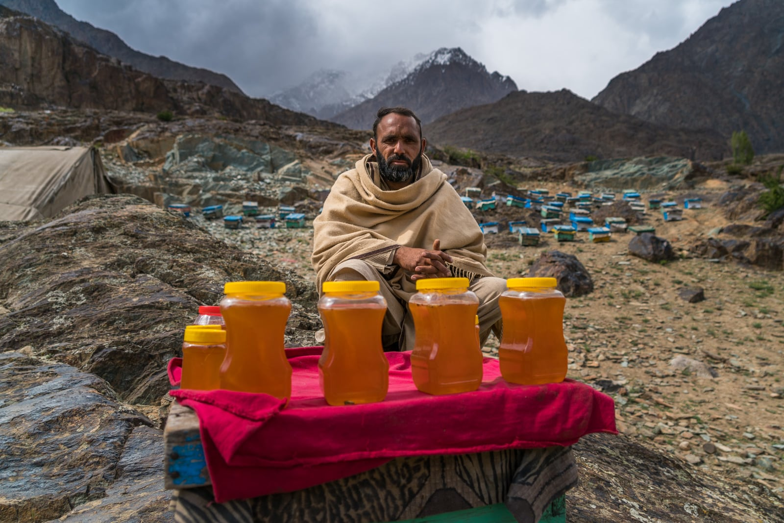Phander Valley travel guide - Bee keeper in Phander - Lost With Purpose travel blog