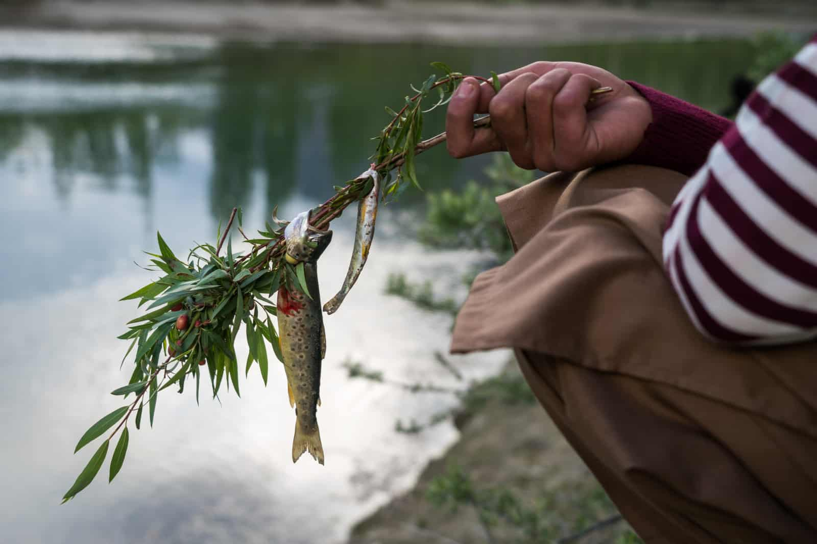 Phander Valley travel guide - Trout fish on a stick with a hand - Lost With Purpose travel blog