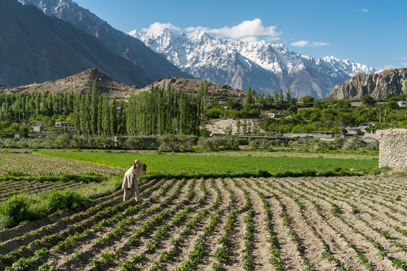 Homestay in Pakistan - A man working his farm field in Ghulkin early in the morning - Lost With Purpose travel blog
