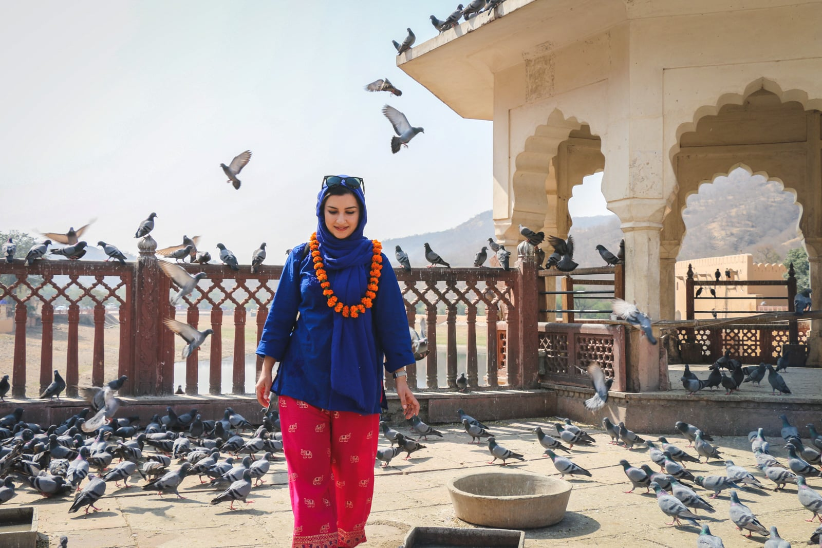 Interview with female Iranian travel blogger - Matin in India with pigeons - Lost With Purpose travel blog