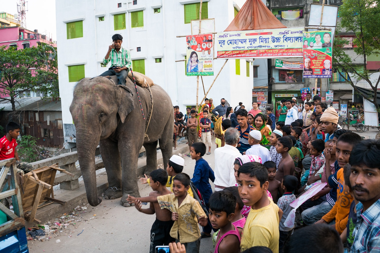 Ways of getting more off the beaten track while traveling - Elephant on the streets of Dhaka, Bangladesh - Lost With Purpose travel blog