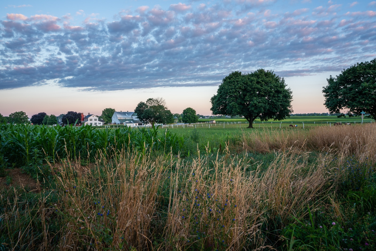 Reflections - Soft sunrise pastels over Lancaster, Pennsylvania - Lost With Purpose travel blog