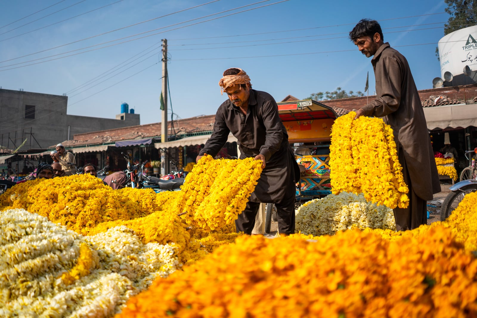 Vendors laying out yellow flowers at Phool Mandi flower market in Lahore, Pakistan