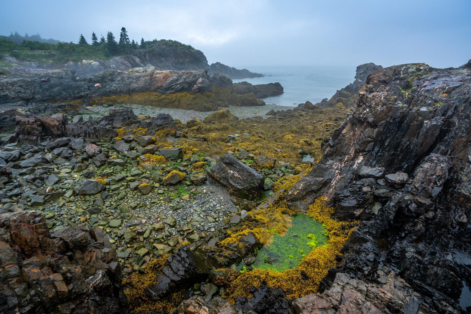 Moody weather on the Bold Coast shoreline near Lubec, Maine