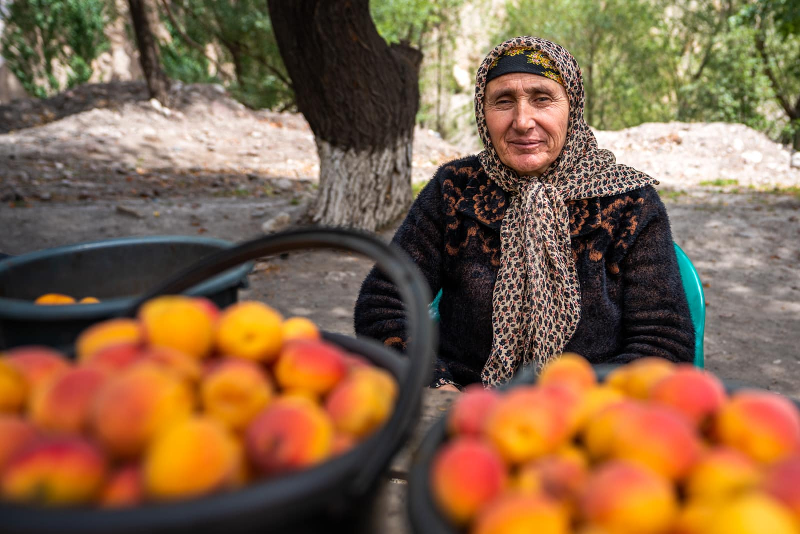 Woman selling apricots by the road in Western Tajikistan