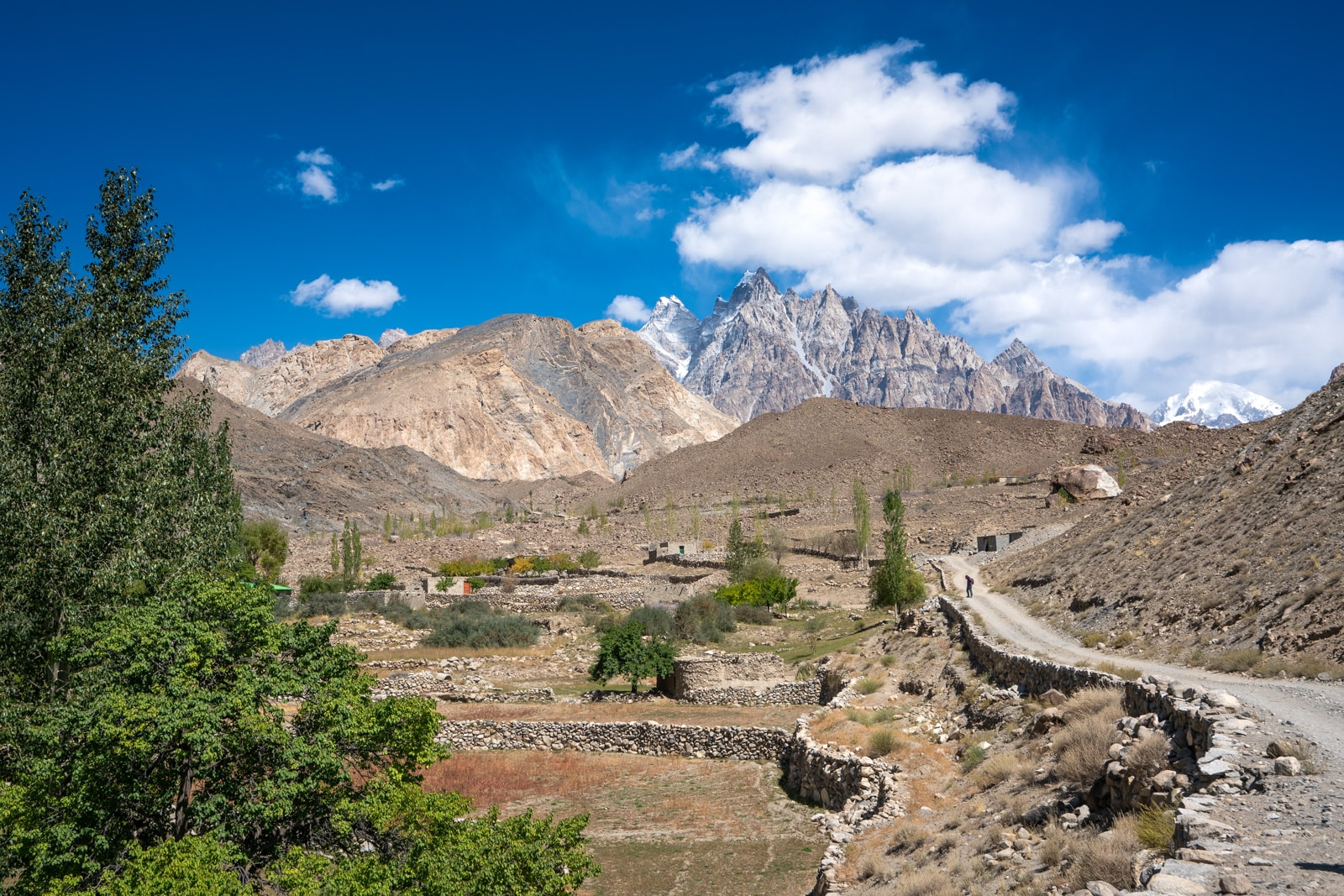 Trek to White Glacier in Passu, Hunza, Pakistan