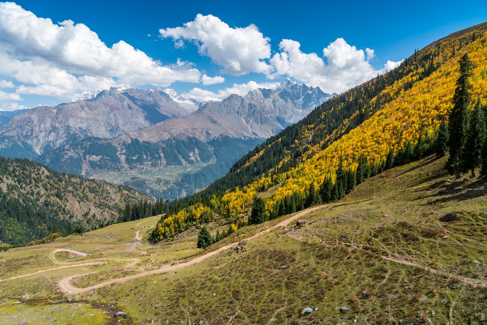 Trees and mountains in autumn in Swat Valley, Khyber Pakhtunkhwa, Pakistan