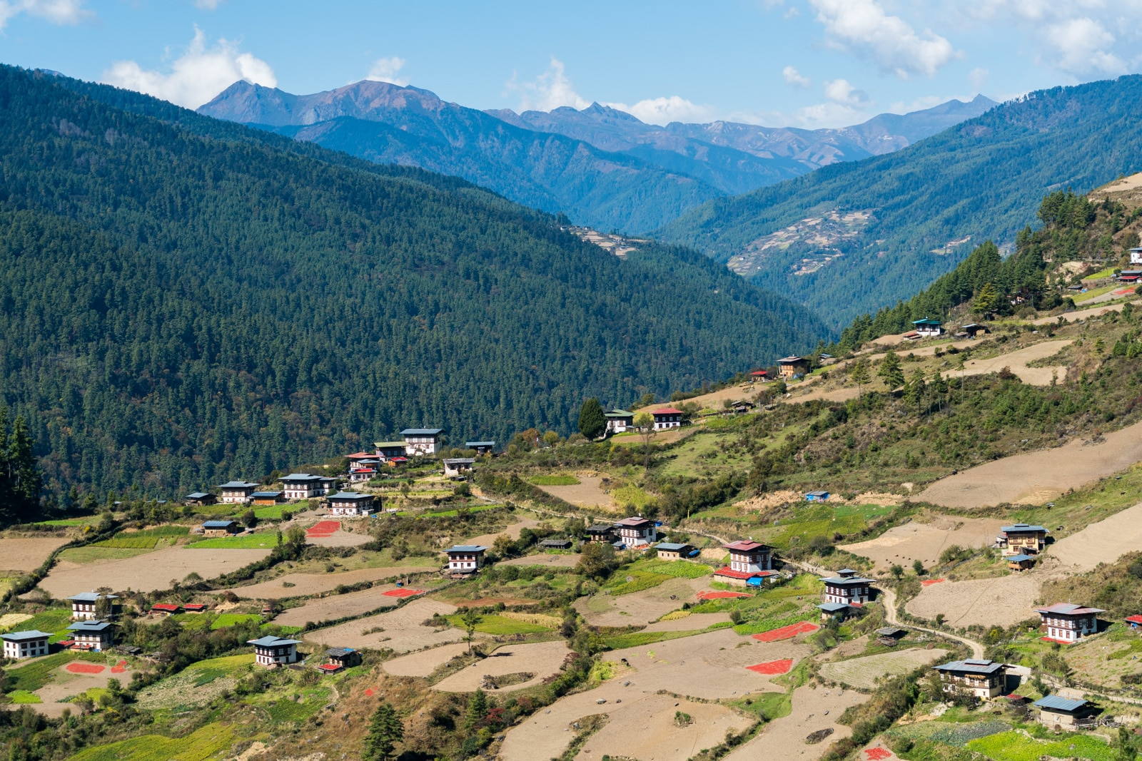 Traditional Bhutanese houses on the way to Haa Valley
