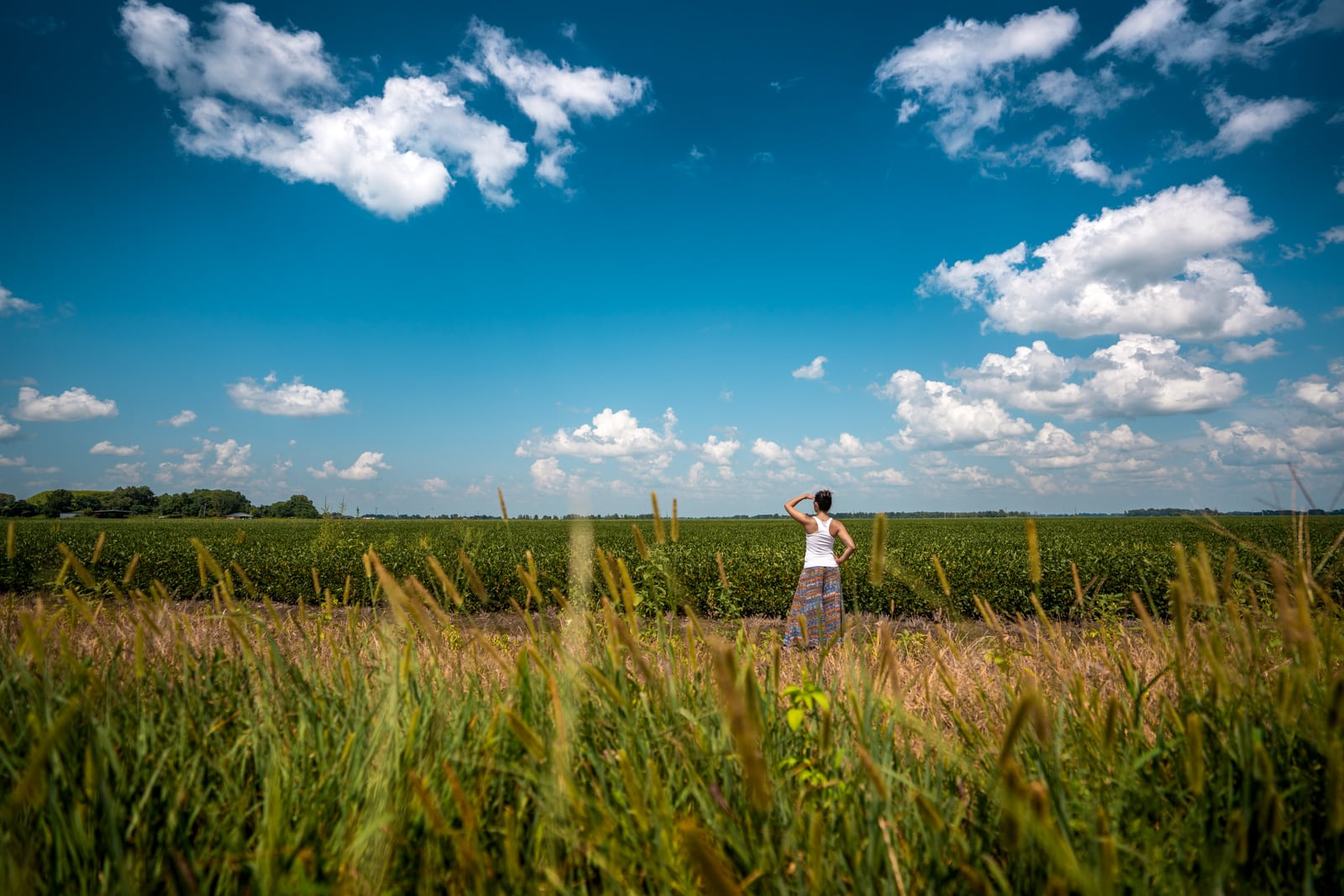 Girl looking at fields in the United States