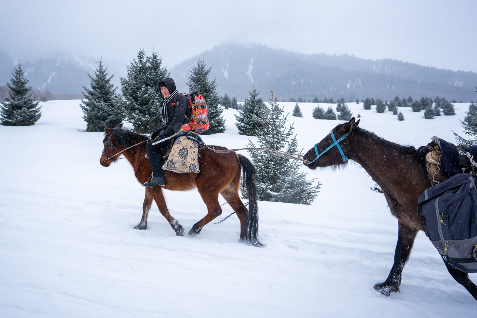 Porter carrying backpack on horse in the snow in Boz Uchuk, Kyrgyzstan