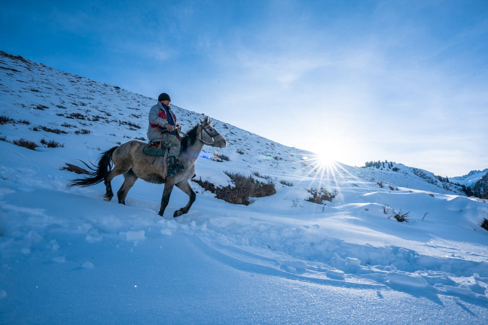 Horse riding in snow in Kyrgyzstan