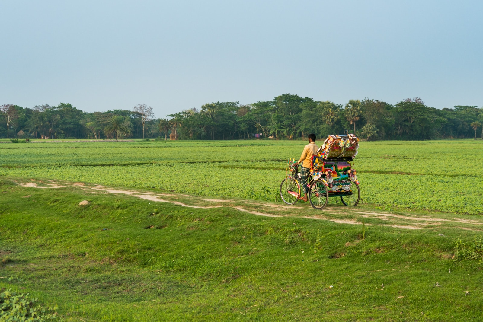 Cycle rickshaw driver on Monpura island, Bangladesh