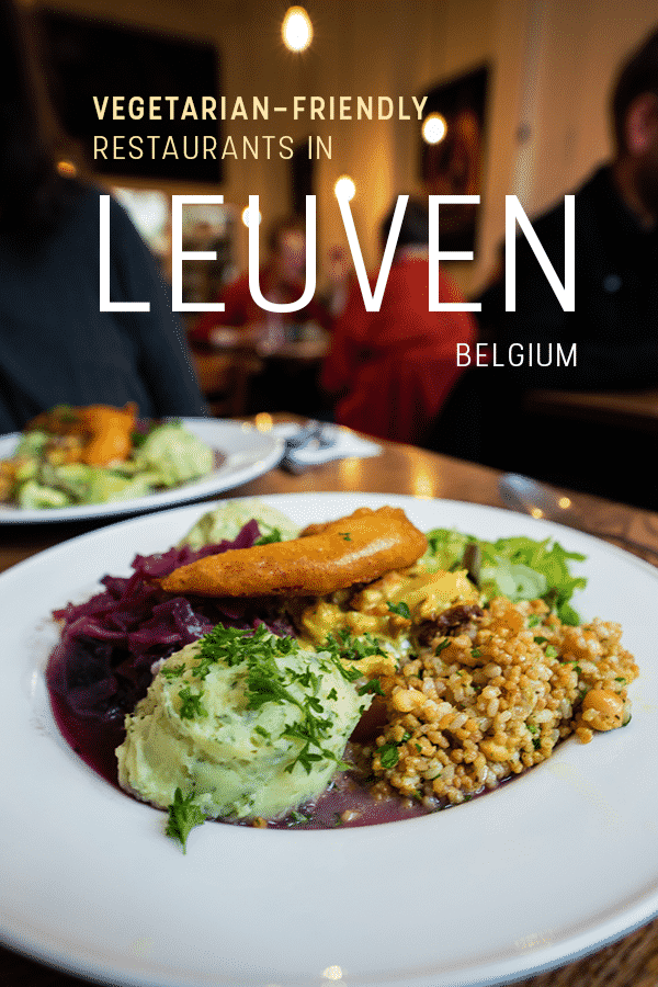 Are you a vegan or vegetarian looking for actually tasty vegetarian restaurants in Leuven, Belgium? I got you! Here's a list of interesting and unique vegetarian-friendly restaurants in and around Leuven for people of all budgets and food preferences. Includes opening hours, cuisines, recommendations, and more.
