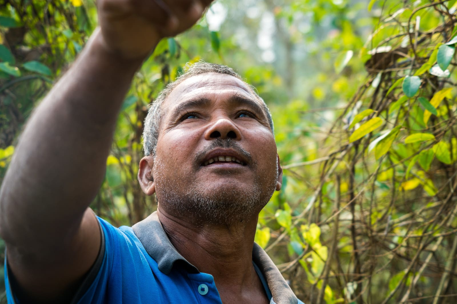 Jadav Payeng, Forest Man of India on his island