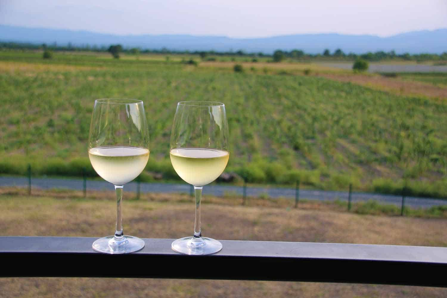White wine tasting in Kakheti, Georgia