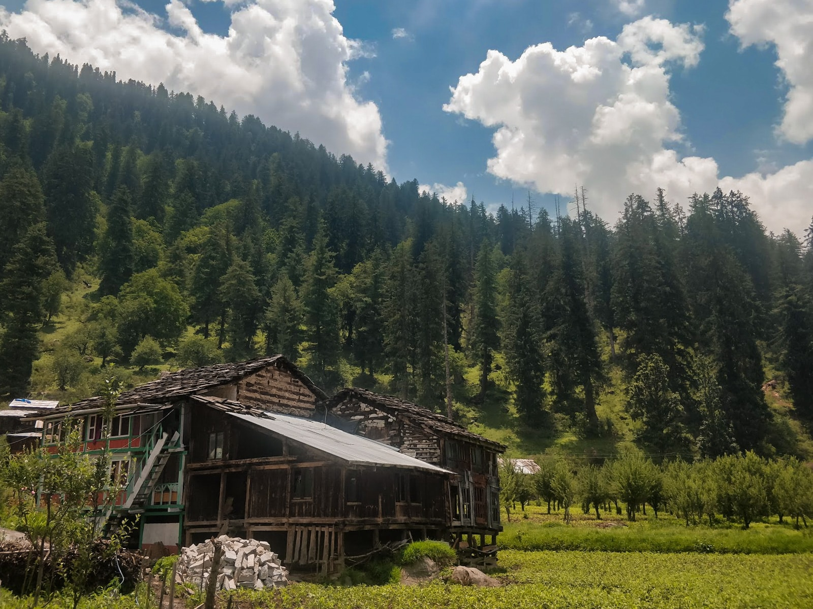 A wooden home in green pastures surrounded by pine forest in Kalga Village, Parvati Valley, Himachal Pradesh state, India