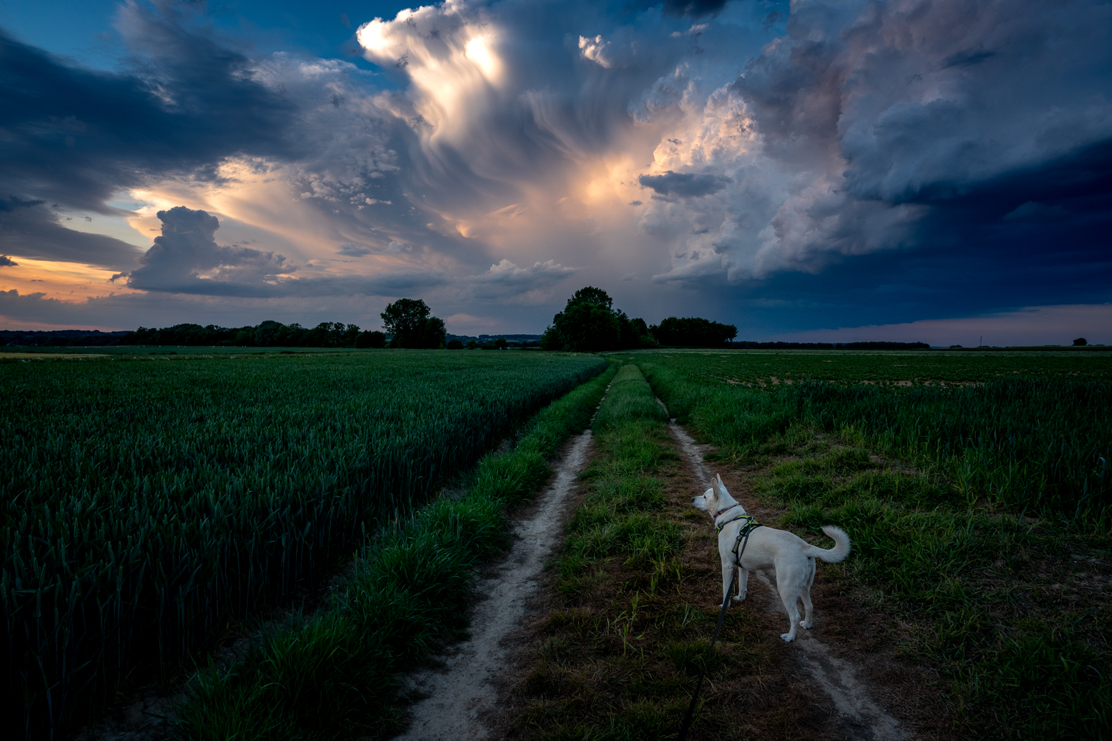 Epic sunset with storm clouds in Leefdaal, Belgium